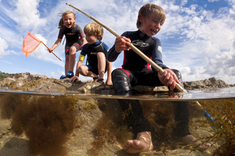 Children dipping in rockpools at low tide, The Wildlife Trusts