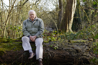 David Attenborough My Wild Life