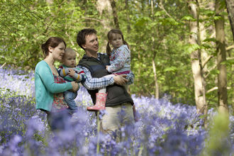 Family outdoors in bluebells
