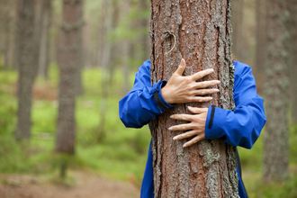 Tree hugger (c) Mark Hamblin/2020VISION