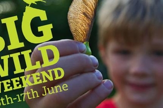 Big Wild Weekend - BCN Wildlife Trust