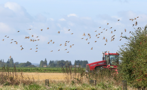 Farming | The Wildlife Trusts