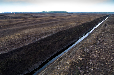 Peat extraction site, Lancashire (Matthew Roberts)