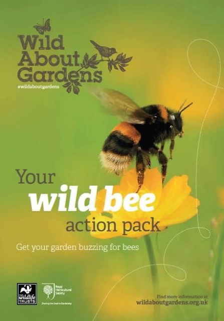Wild About Gardens Bee Action Pack