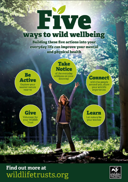 5 Ways to Wild Wellbeing Poster