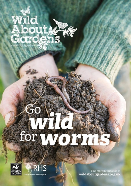 wild for worms