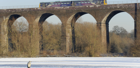 northern rail train on viaduct, manchester