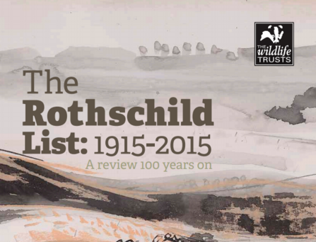 Rothschild list review cover