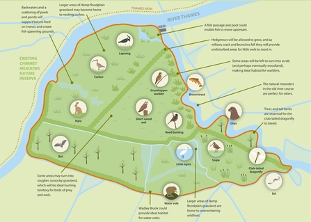 duxford old river wildlife map