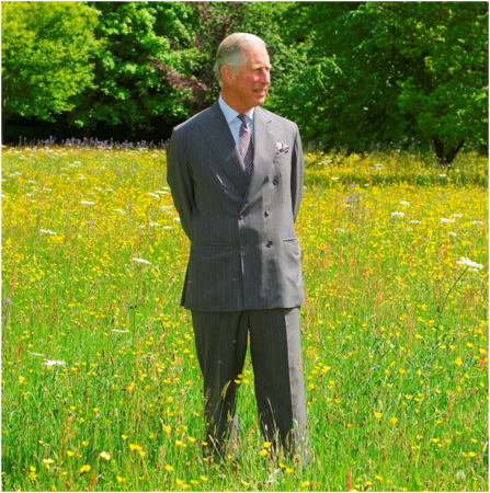 Prince Charles at Highgrove Coronation Meadows (c) Robin Bell