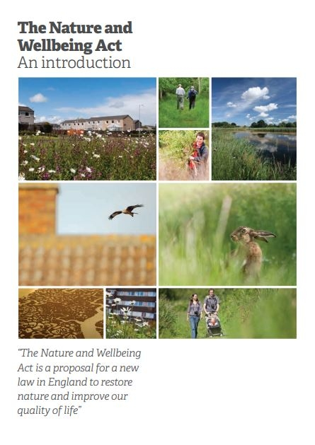 Nature and wellbeing act summary cover
