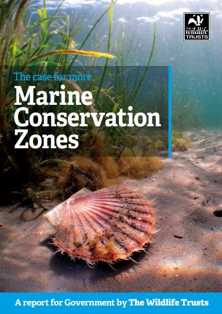 The case for marine conservation zones cover