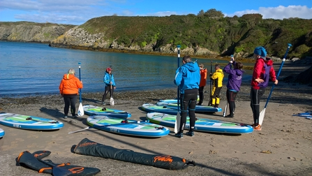 A group learning to paddleboard