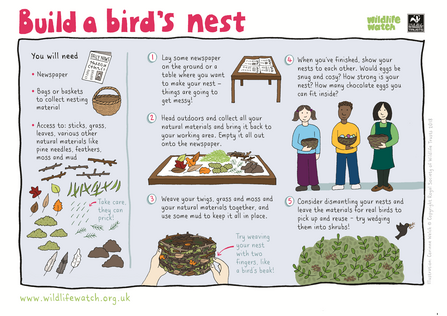 Build a bird's nest activity sheet