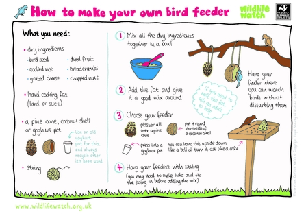 How to make a bird feeder activity sheet