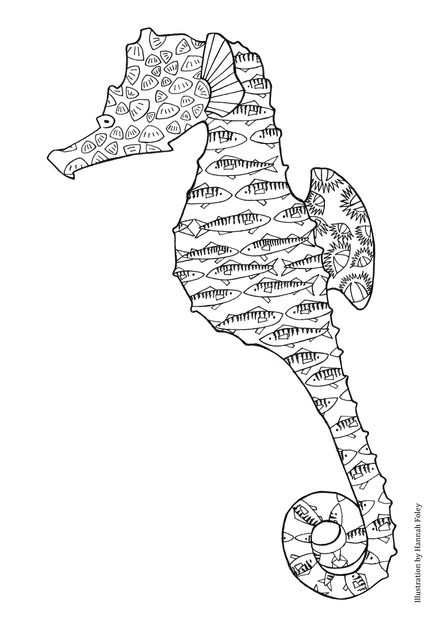 Seahorse colouring in sheet