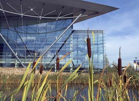 Met Office with lake and bullrushes, Biodiversity Benchmark, the Wildlife Trusts
