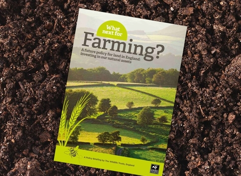 What next for Farming? report