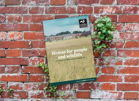 Homes for people and wildlife