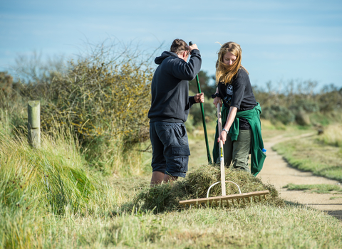 volunteer wildlife trust
