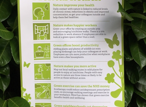 Nature and Mental Health poster